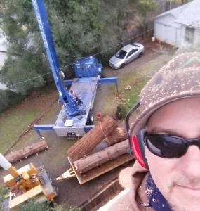 Tree Crane Removal Redding